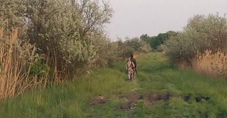 Season Opening Roe Deer Hunt