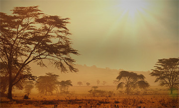 Hunting trips: Namibia