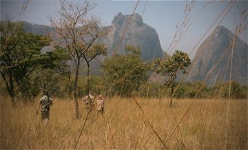 Hunting trips: Stalking