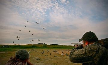 Hunting trips: Wing Shooting