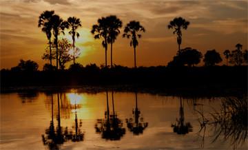 Hunting trips: Botswana