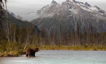 Hunting trips: North America
